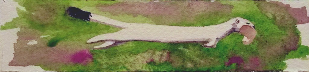 Unhindered Weasel #1 Bookmark