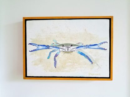 Feisty Blue Crab hanging on wall
